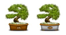 Desktop Icons Set: Bonsai by