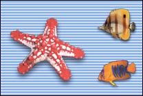 Desktop Icons Set Coral Reef by John Schilling