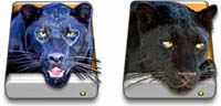 Desktop Icons Set Panther by Harvey Lubin