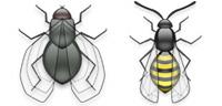 Desktop Icons Set Flying Aqua Bugs by dreamflask