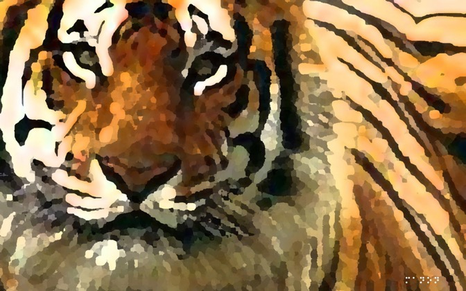 High-resolution desktop wallpaper Tiger Tiger Burning Bright by Manon Michel
