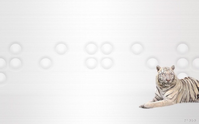 High-resolution desktop wallpaper Platinum Tiger by Manon Michel