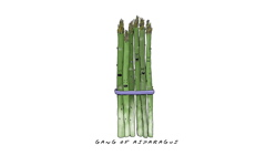 High-resolution desktop wallpaper Gang of Asparagus by spratz