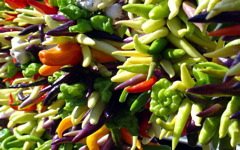 High-resolution desktop wallpaper Bright Peppers by PicklesKC