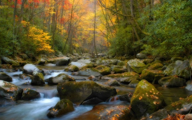 High-resolution desktop wallpaper Fall in Tennessee by TheFozz