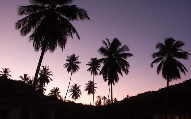 High-resolution desktop wallpaper Twilight Palms by meckimac