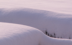 High-resolution desktop wallpaper Snow on the Roof by c.a.b.