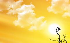 High-resolution desktop wallpaper Sunset Watch by dimage