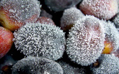 High-resolution desktop wallpaper Frozen Grapes by jonaben
