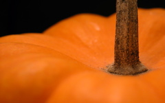 High-resolution desktop wallpaper Pumpkin by Mike Swanson