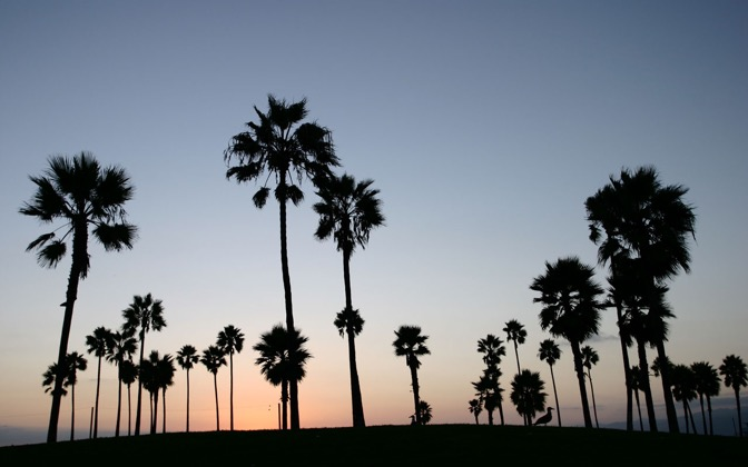 High-resolution desktop wallpaper Venice Beach by r-dub-u