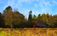High-resolution desktop wallpaper Piney Grove Farm by TheFozz