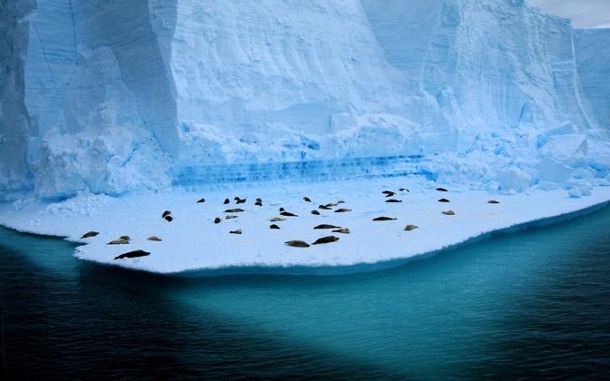 High-resolution desktop wallpaper Living on Ice by benno_hew