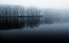 High-resolution desktop wallpaper Foggy Morning 2 by yms