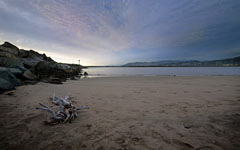 High-resolution desktop wallpaper Ventura Beach Driftwood by Chris Fenison