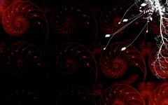 High-resolution desktop wallpaper Nautilus by gabb2001