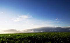High-resolution desktop wallpaper Green Fields of Sweden by momle