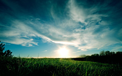 High-resolution desktop wallpaper Grassy Sunset by mattyv8