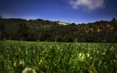 High-resolution desktop wallpaper Green Hollywood by matt mosher