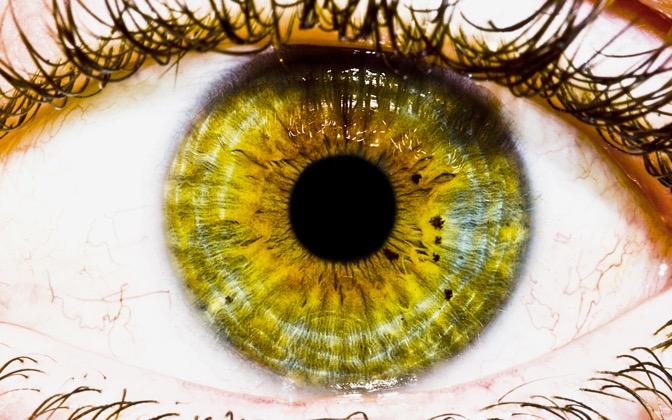 High-resolution desktop wallpaper The Eye by bachamp