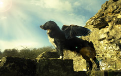High-resolution desktop wallpaper Withus Flying Dog by flyingwombat007