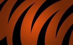 High-resolution desktop wallpaper Tigrish by tigrish
