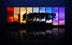 High-resolution desktop wallpaper Spectrum of a Tree by Dominic Kamp