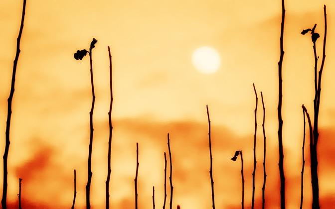 High-resolution desktop wallpaper Sunset by Petr Stefek