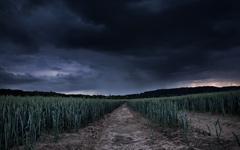 High-resolution desktop wallpaper Storm Field by Chuck