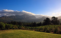 High-resolution desktop wallpaper Last daylight over Franschhoek's vineyards by Leon_J