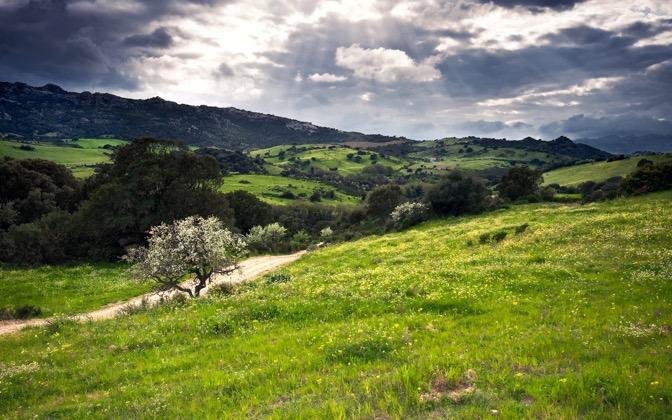 High-resolution desktop wallpaper Green Hills by Parki