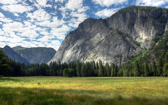 High-resolution desktop wallpaper Yosemite Meadows by Nick O