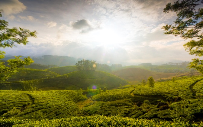 High-resolution desktop wallpaper The Hills of Munnar by PiyushB