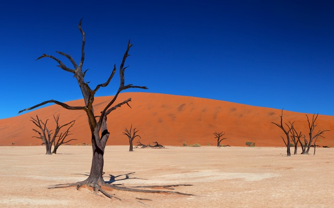 High-resolution desktop wallpaper Dead Vlei by Philippe Clairo