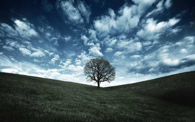 High-resolution desktop wallpaper Oak Tree Hill by Dominic Kamp