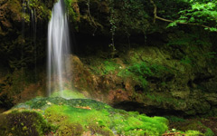 High-resolution desktop wallpaper Bakony Falls by Mark Borbely