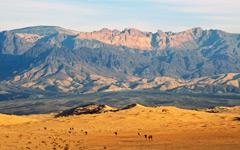 High-resolution desktop wallpaper Ships of the Desert by leviyan