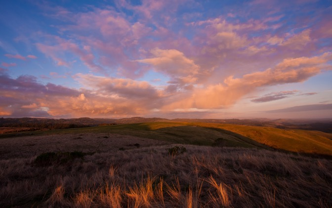 High-resolution desktop wallpaper Majestic Clouds above Golden Blades of Grass by Jessica Carpenter