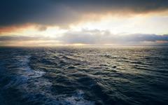 High-resolution desktop wallpaper Newfoundland Stress by alexstrohl