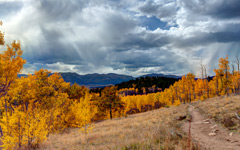 High-resolution desktop wallpaper Aspen Trail by jbkalla