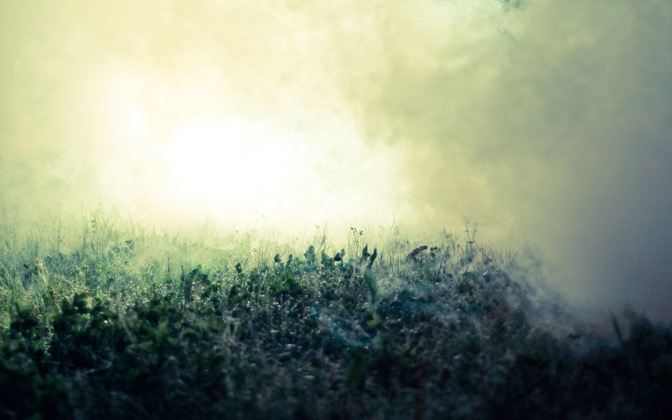 High-resolution desktop wallpaper The Fog by hailey-lane