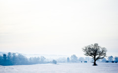 High-resolution desktop wallpaper Winter Wonderland by Josh Sheppard