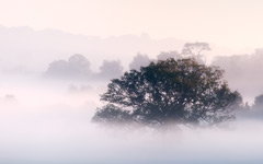 High-resolution desktop wallpaper Morning Mist by DiscoV8