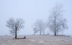 High-resolution desktop wallpaper Frozen Mist by blur612