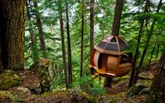 High-resolution desktop wallpaper HemLoft Secret Treehouse by lucasjungmann