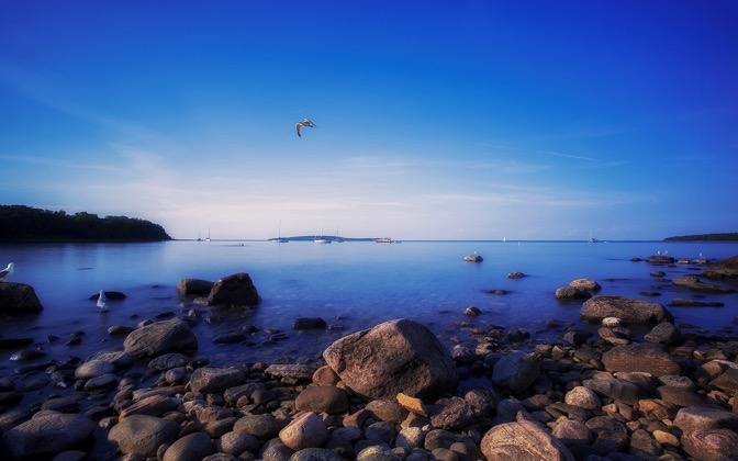 High-resolution desktop wallpaper Seagulls by the Rocks by fallenflowers