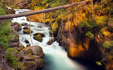 High-resolution desktop wallpaper Toketee River by Sam Scott