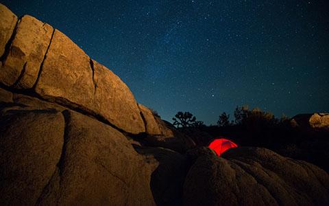 High-resolution desktop wallpaper Stars Over Joshua Tree by Andy Wilde
