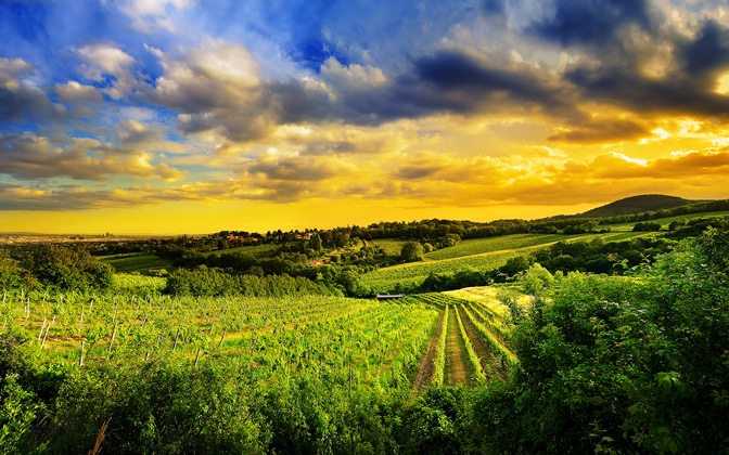 High-resolution desktop wallpaper Hills of Vienna by Mohsen Kamalzadeh