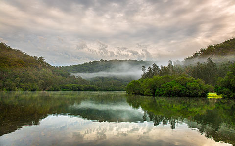High-resolution desktop wallpaper Misty Morning at Berowa Creek by snowlee